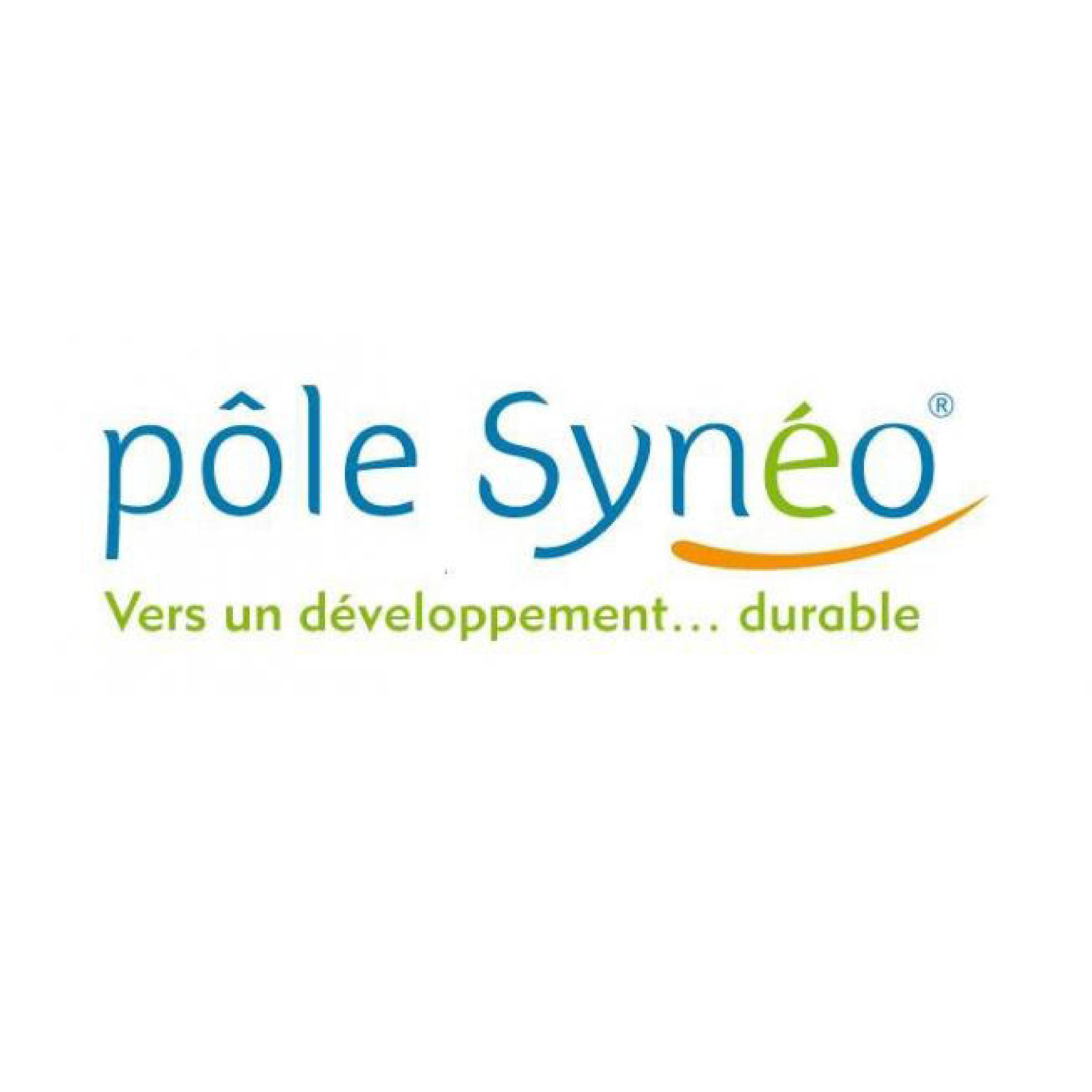pole syneo_Plan de travail 1
